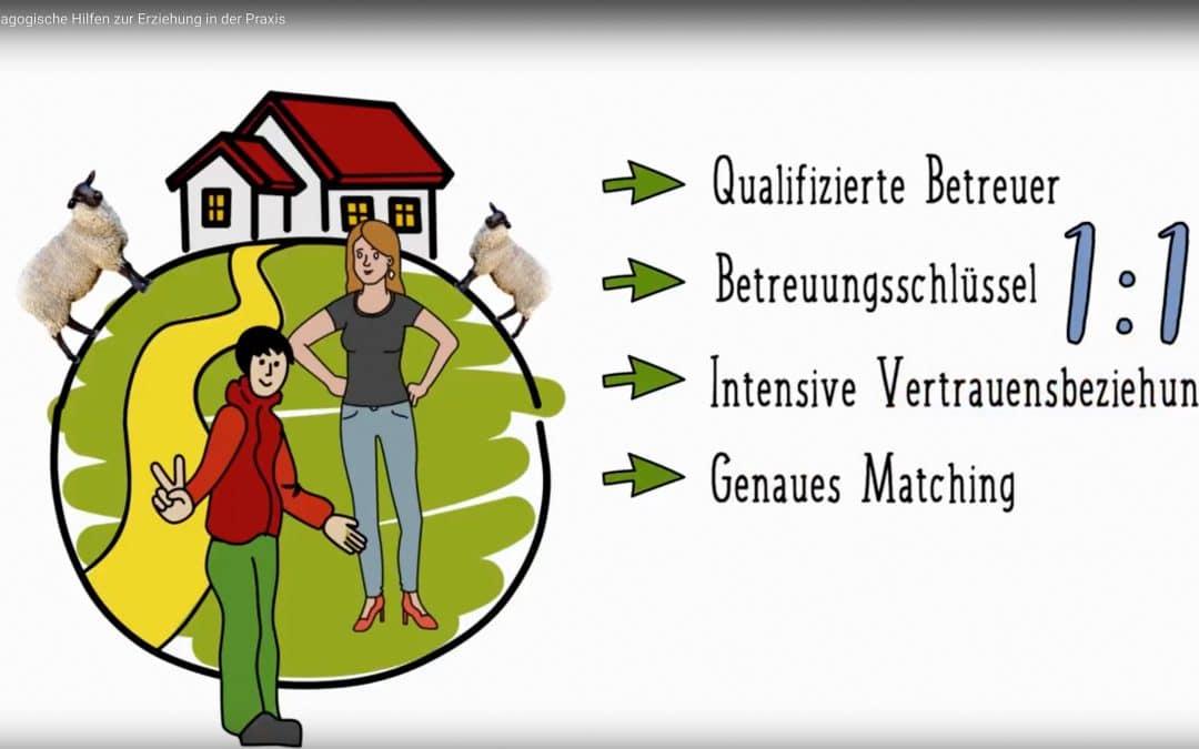 Zusammenarbeit zwischen Jugendamt und individualpädagogischen Trägern