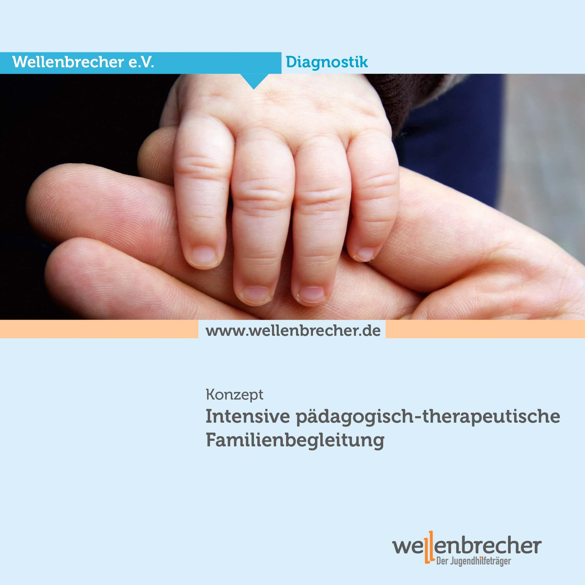 Download Konzeption Intensive pädagogisch-therapeutische Familienbegleitung