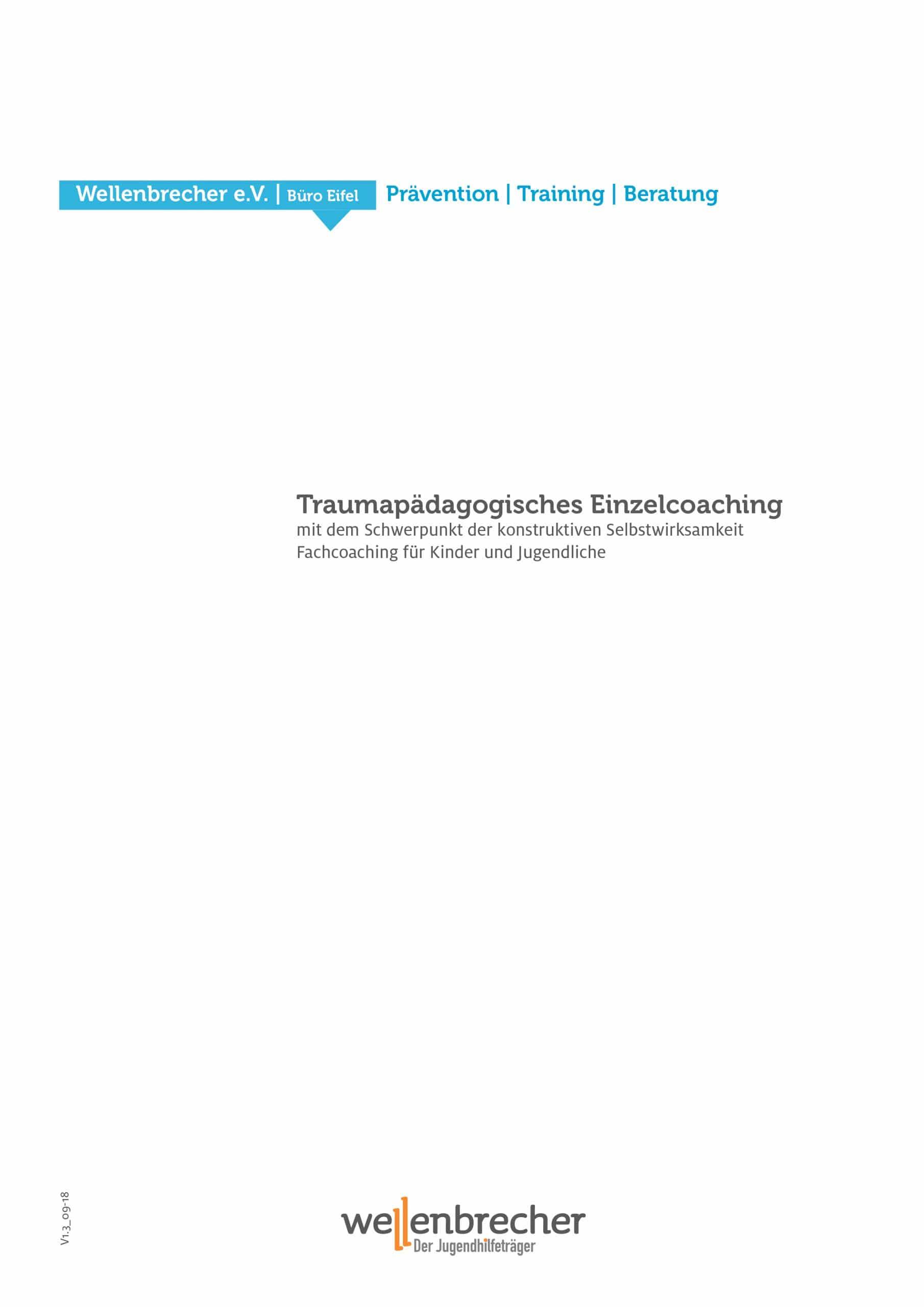 Fortbildung Traumapädagogisches Einzelcoaching